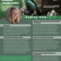 Faces of BVIS: Ashley Ulm